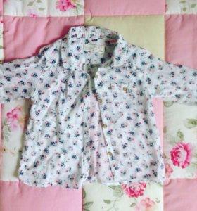 Рубашка Zara 18-24