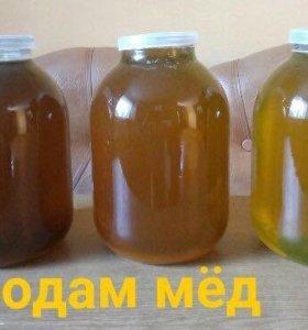 Янтарный мед с юга Башкирии!