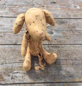 Интерьерная собака, символ 2018