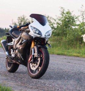 """Мотоцикл CTM250-4""""Falcon Speedfire"""""""