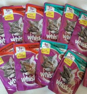 Whiskas для котят и кошек