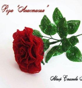 "Роза ""Анастасия"""
