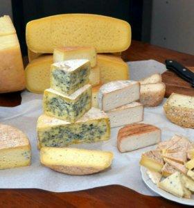 Сыр домашний из козьего и коровьего молока