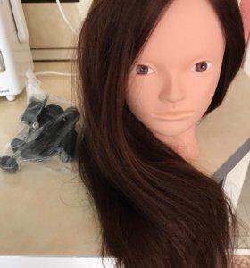 Маникен учебный для парикмахеров! Абсолютно новый
