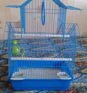 Клетка для попугая ,попугая нет уже продали