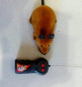 Мышка на пульте управления