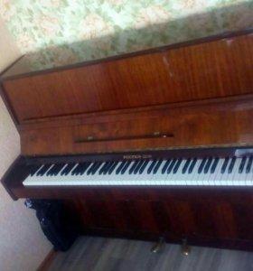 Пианино Ростов Дон