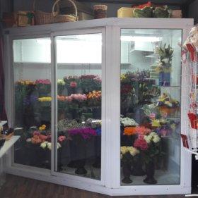 Холодильная камера для цветов б/у