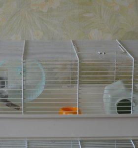 Клетка для грызунов с хомячком или без
