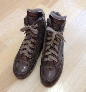 Ботинки Tosca Blue Shoes (38)