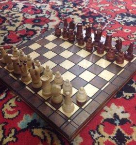 SZ Шахматы