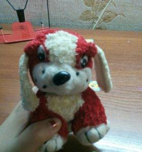 Красно-белая собачка)