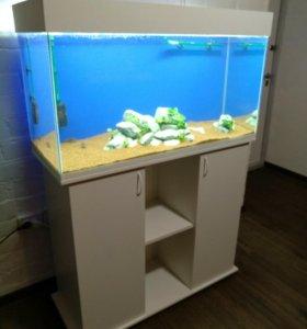 Полностью оборудованный аквариум 200л