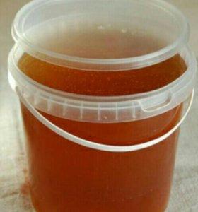 Мёд таёжный свежий