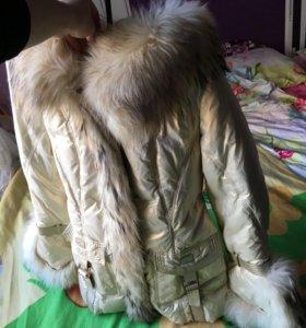 Куртка зимняя ROYAL CAT