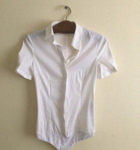 "Рубашка боди ""Elisabetta Franchi"""
