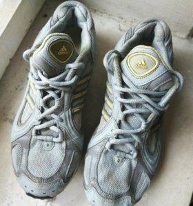 Кроссовки спортивные для бега Adidas оригиналобувь