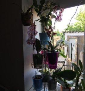 Стойка для цветов