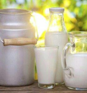 Продам коровье молоко, кефир, сметану, сыр, творог