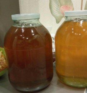 Мед из Башкирии