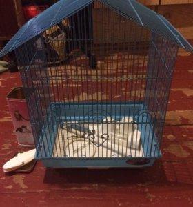 Все необходимое для попугайчика