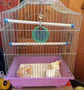 Клетка для птиц б/у