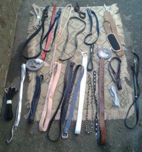 ремни и цепи для сумок