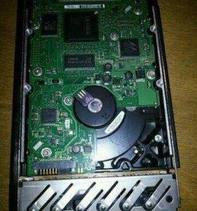 Жесткий диск серверный