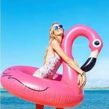 Фламинго круг