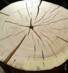 Пни для декора. Пень дерева для интерьера.