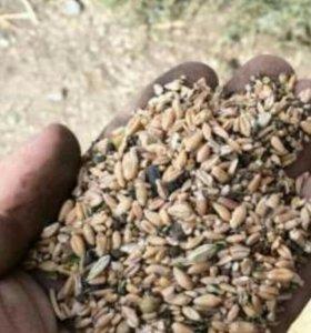 Рисовые отходы