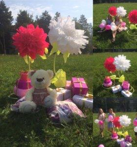 Ростовые цветы в аренду или на заказ для фотоссеси