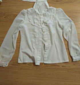 Блузки/водолазки для девочек 1-4 класс
