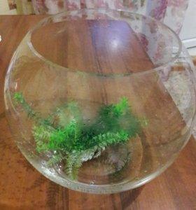 Круглый аквариум 10 литров
