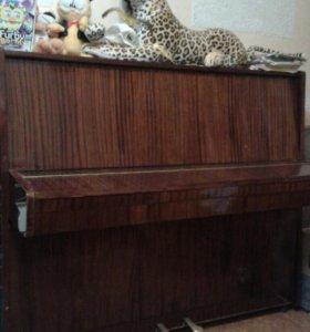 Бесплатно Фортепиано