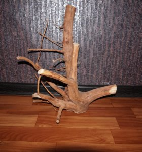 Коряга из корня ивы