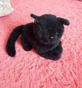 Кошка черная с голубыми глазами.