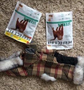Комбенизон, шлейка и корм для кошек