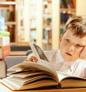 Дошкольное и начальное образование