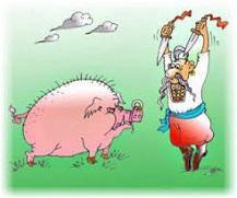 Интересуюсь свиньями домашними