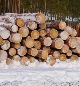 Лес лиственница кругляк