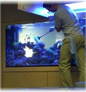 Уход за вашим аквариумом