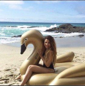 Надувной лебедь