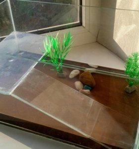 Террариум с черепахами