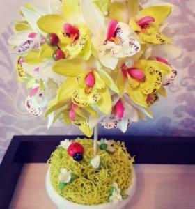 Топиарий орхидея