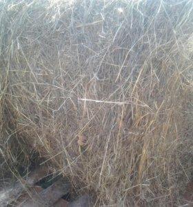 Рулон сена