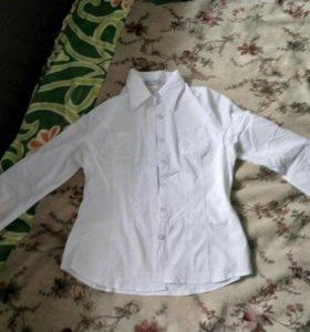Блузки, кофта