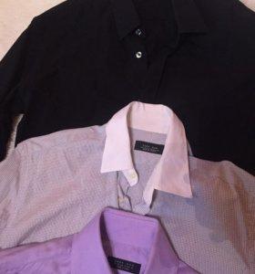 Рубашки Zara (slim)