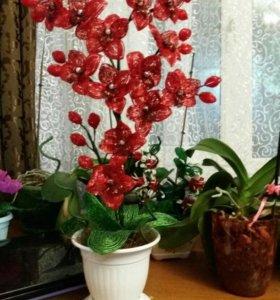 Цветы из бисера под заказ любым цветом