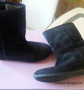Женские зимние сапоги carlo pazolini 39